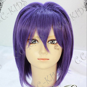 Purple  CLANNAD  Fujibayashi Ryou Short Nylon Cosplay Wig