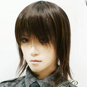 Brown  Vampire Knight  Kaname Kuran  Short Nylon Cosplay Wig