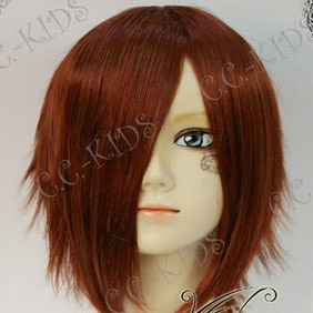 Brown ZONE-00  kujyou Saburou  Short Nylon Cosplay Wig