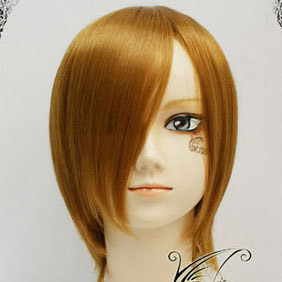 Brown  Short Nylon Cosplay Wig