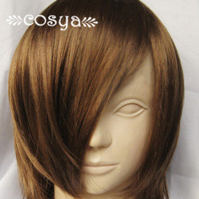 Brown  Katekyo Hitman Reborn WIG0027  Short Nylon Cosplay Wig