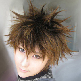 Brown Katekyo Hitman Reborn WIG0031  Short Nylon Cosplay Wig