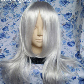 Silver Long Straight Nylon Cosplay Wig