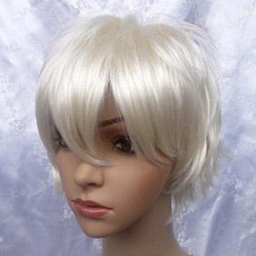 Silver Short Nylon Cosplay Wig