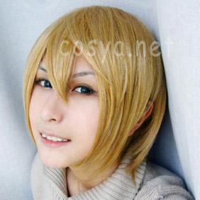 Blonde Axis Powers Hetalia  Swiss Short Nylon Cosplay Wig
