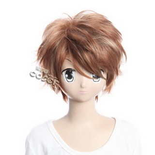 Shin Sangoku Musou6Shou Kai Brown Short Nylon Cosplay Wig