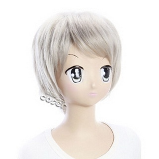 Axis Powers Axis Powers Hetalia Prussia Silver Short Nylon Cosplay Wig