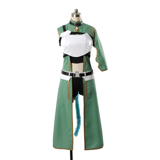 Sword Art Online II Asada shino Cosplay Costume