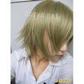 http://www.aya-koya.com/images/v/201103/S0010675-2.jpg