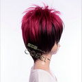 http://www.aya-koya.com/images/l/201206/WIGG00701-3.jpg