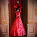 Sound Horizon Marchen 青き伯爵の城 伯爵の妻 赤風 コスプレ衣装