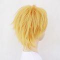 http://www.aya-koya.com/images/l/201208/0817/WIGA00056-6.jpg