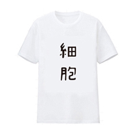 https://www.aya-koya.com/images/l/201808/CLOW02699-1.jpg